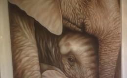 canvaselephants