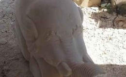 carved elephant statue