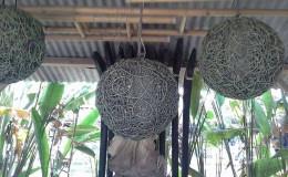hanging rattan 2