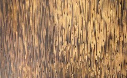 timber closeup